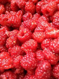Raspberry (2).jpg