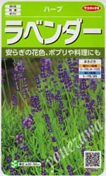 lavender006.jpg